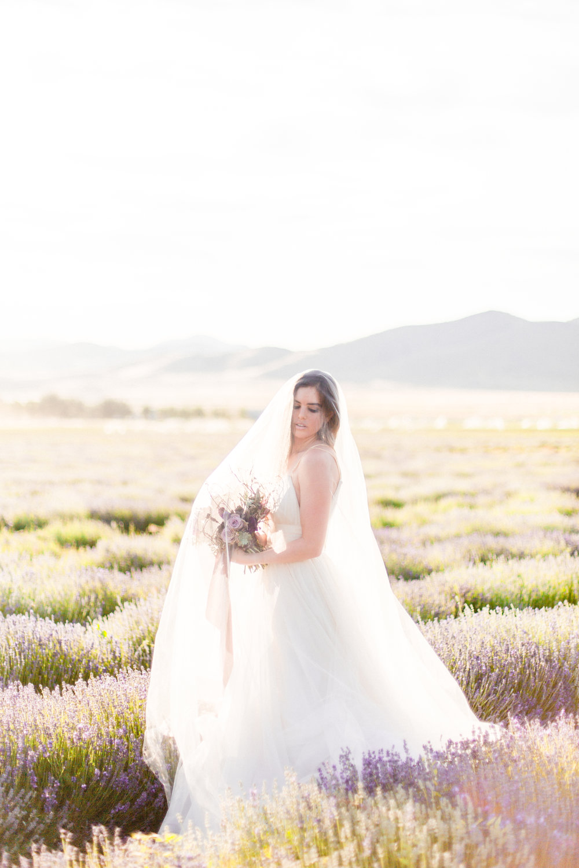 Carol Hannah Bridal Adella Gown Tiffany Sangster 21.jpg