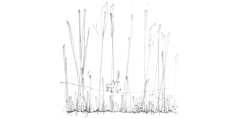 Rochester_Concept_Sketch.jpg