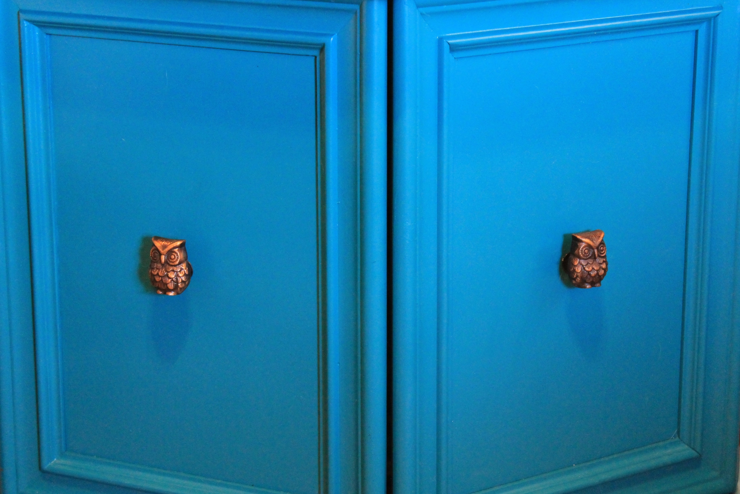 Close up of brass door pulls shaped like an owl