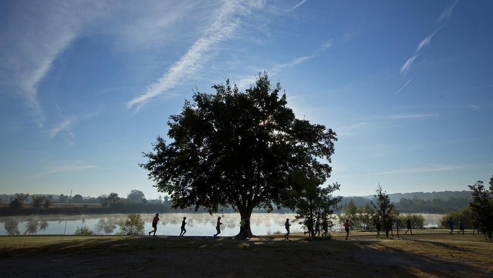 SHELBY FARMS PARK: ELEVATING A CITY