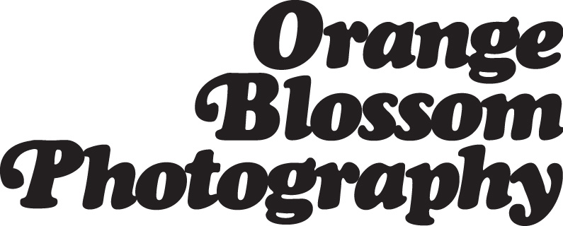 Orange Blossom Photography