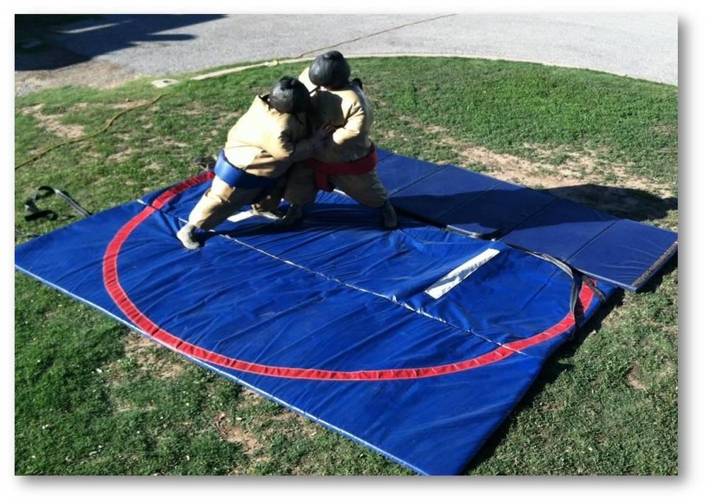 Sumo Wrestling Set.jpg