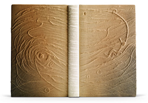 2007 - Faith Shannon. Although there's a chance the image of this binding doesn't translate into what it looks and feels like in-person, the texture and colors create a nice impression.  http://www.designerbookbinders.org.uk/exhib/booker/booker_2007/booker_5.html