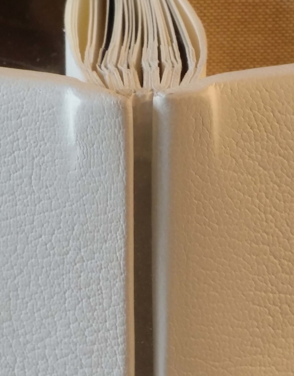 """Ethan Ensign. """"Lap-back"""" binding. Have never seen one in person before. I like the board's texture here, and overall of course I like the white. Decent photo  here ."""