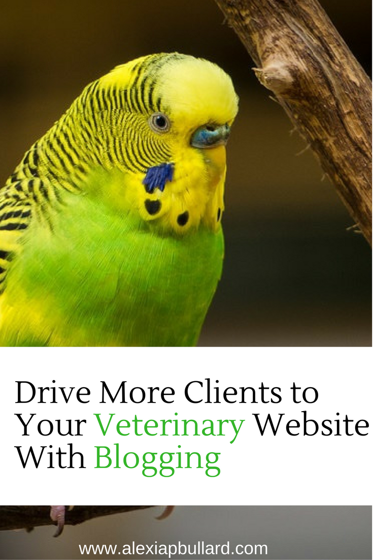 Drive More Clients to Your Veterinary Website With Blogging || Alexia P. Bullard || www.alexiapbullard.com