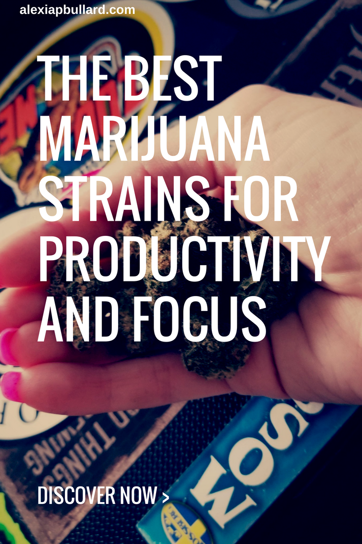 This list of the best marijuana strains for productivity and focus is sure to help you get more work done, so you can grow your brand and get more sales. || Booklexia Content Marketing, cannabis content marketing, cannabis marketing, cannabis writer