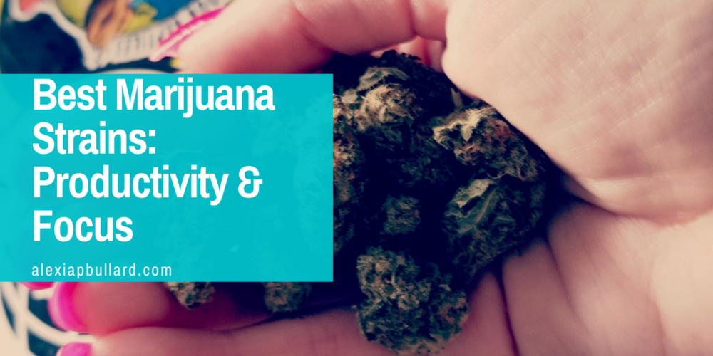 best marijuana strains for productivity