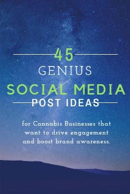 45 Genius Social Media Post Ideas for the Cannabis Industry | Booklexia Content Marketing || alexiapbullard.com