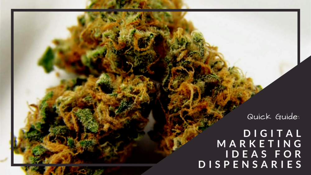 Digital Marketing Ideas for Dispensaries || Booklexia Content Marketing || alexiapbullard.com