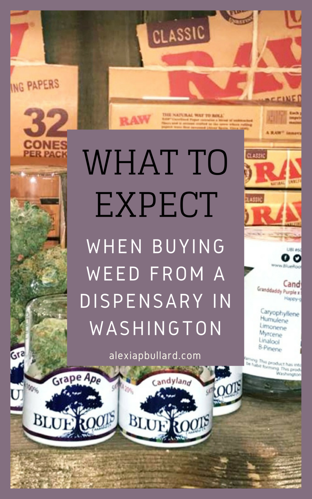 How to buy weed from a dispensary in Washington || Booklexia Content Marketing