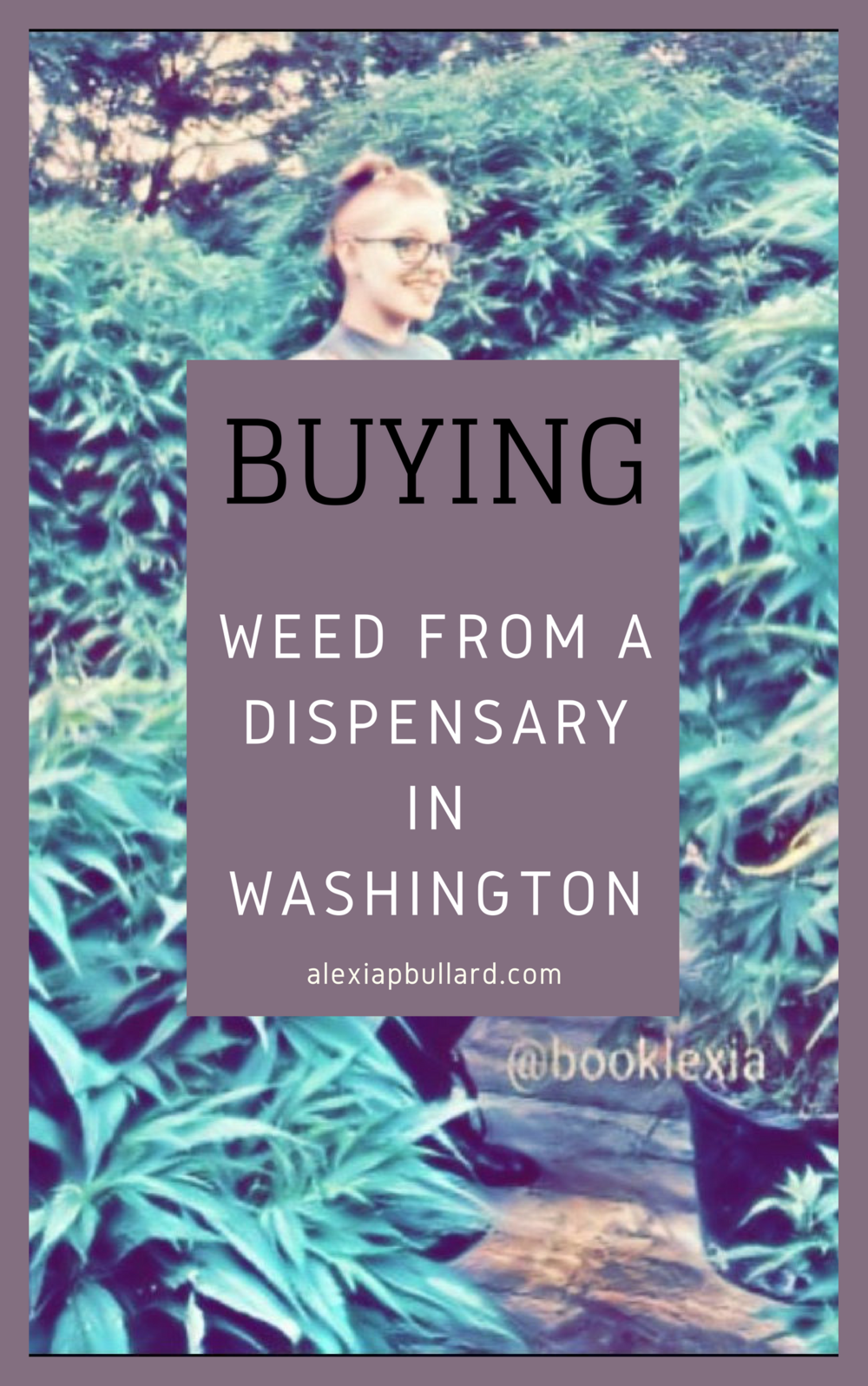 Buying Weed From a Dispensary in Washington || Booklexia Content Marketing
