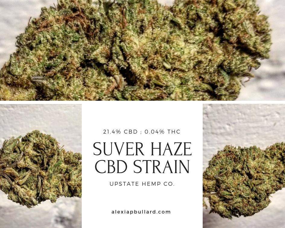 Booklexia Bud Bios / Suver Haze (CBD Strain Review)