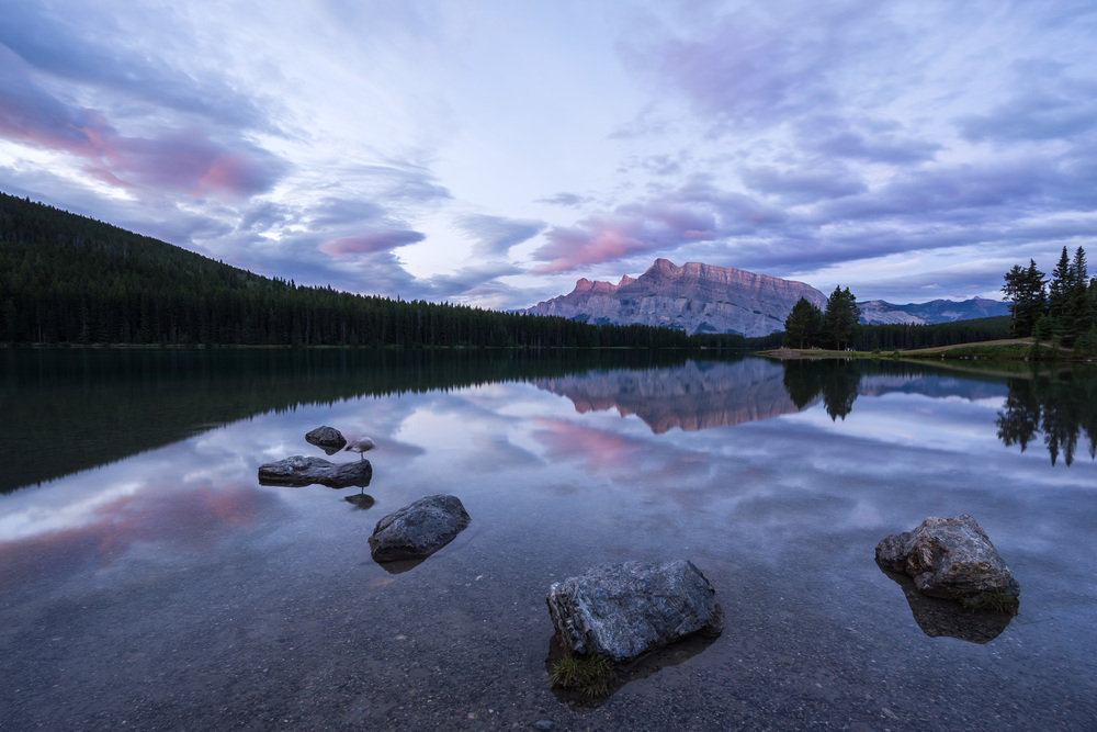 4. Catching a sunrise at Two Jack Lake: You can never go wrong with a sunrise session at Two Jack Lake. This spot offers tons of top-notch angles to photograph.