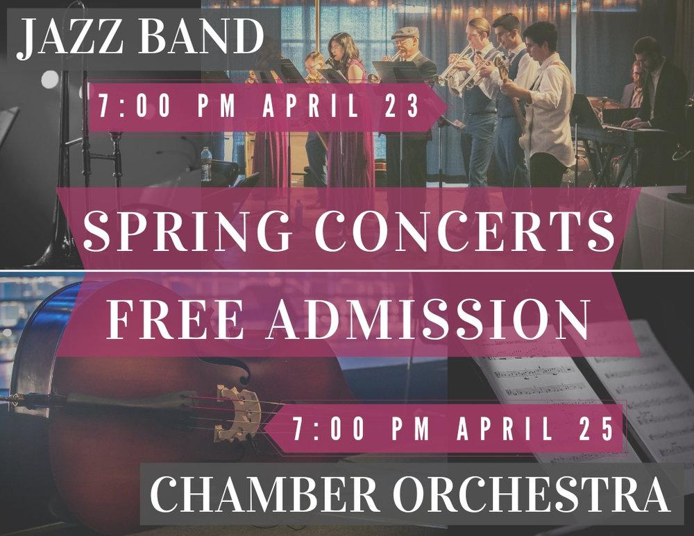 Jazz band _ Chamber Orchestra (2).jpg