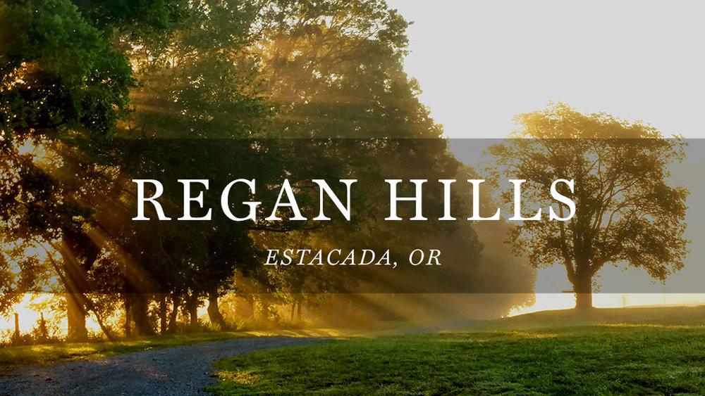 Regan Hills // Estacada, OR