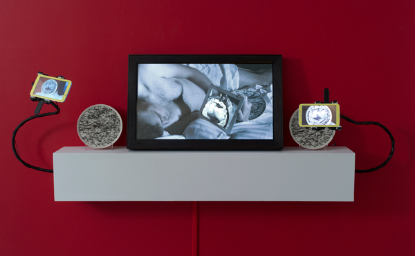 Left and right- Nue Morte, 2013 center- Double Narcissus, 2012 Photo by John Berens, courtesy bitforms gallery nyc.jpg