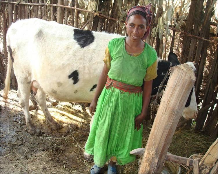 Livestock development.jpg