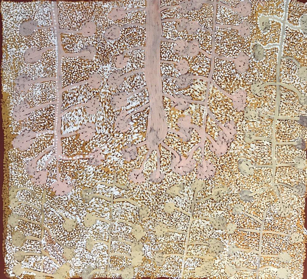 Kunmanara (Kathleen) Injiki Tjapalyi  Antara - Maku Dreaming  39 X 39 inches  ( 100 x 100cm)  acrylic on linen Mimili Maku Arts Catalog #175-15   EMAIL INQUIRY