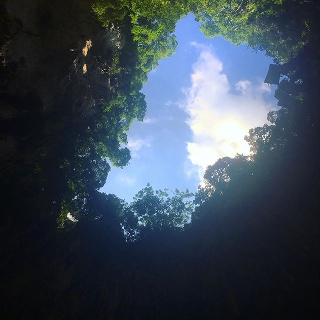People go visit because of the temples, but the nature is always my favorite part #batucave #malaysia #foreveronvacation