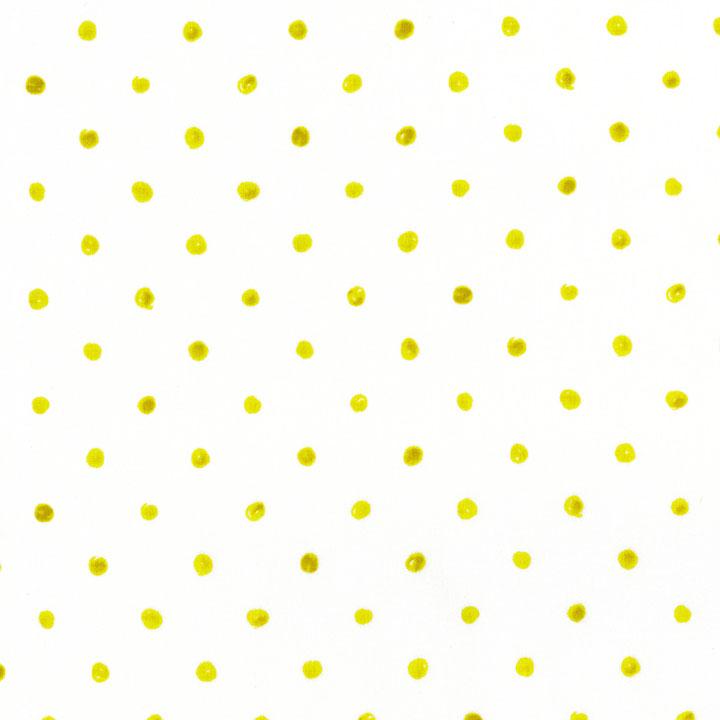 2953-004.jpg