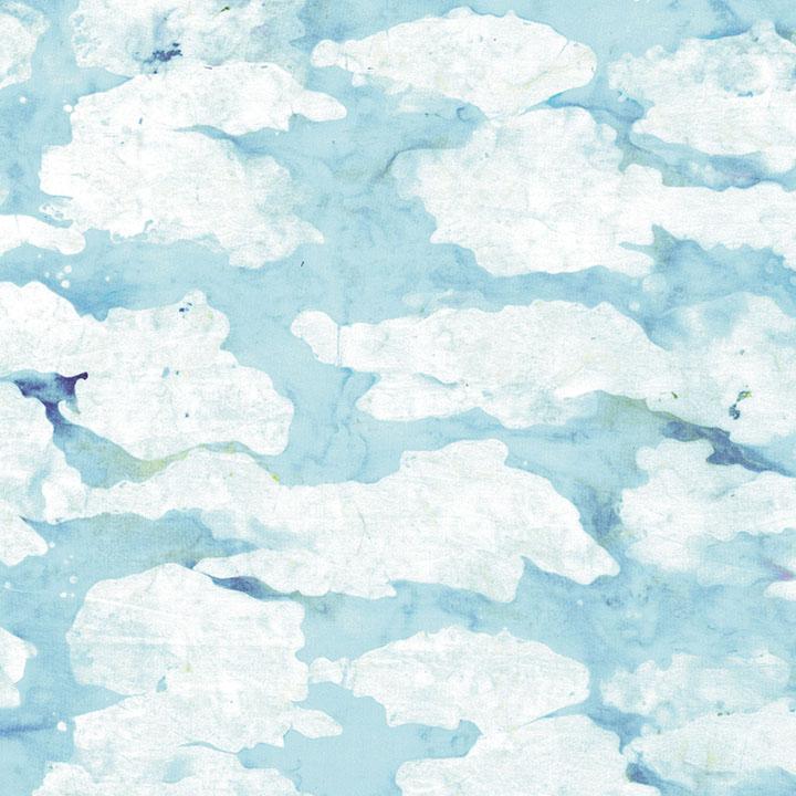 3097-001 Cloudy Day-Breeze.jpg