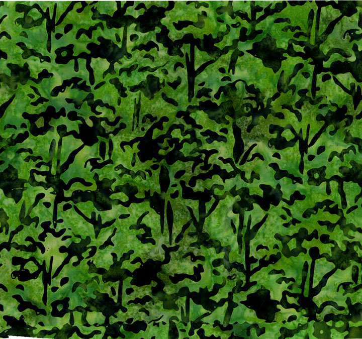 3098-003 Tree Top-Fern.jpg