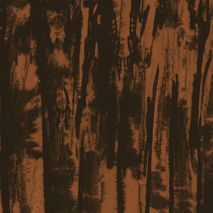 3138-003 Fossil- Bark.jpg