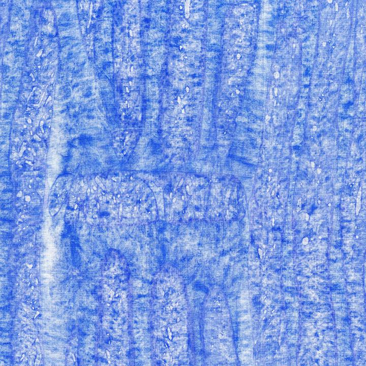 3508-003 Shoal-Periwinkle.jpg