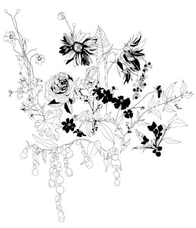 camilleshu: summer/fall seasonal illustration for Fieldwork Flowers