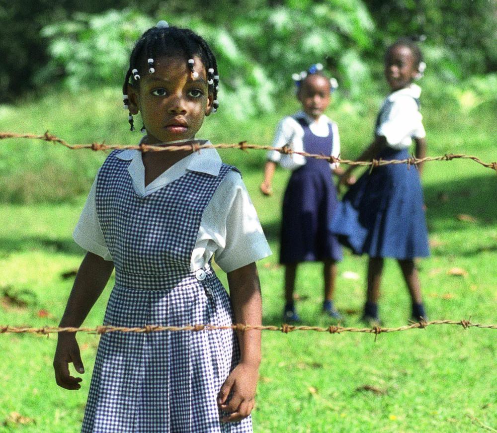 CURIOSITY | JAMAICA