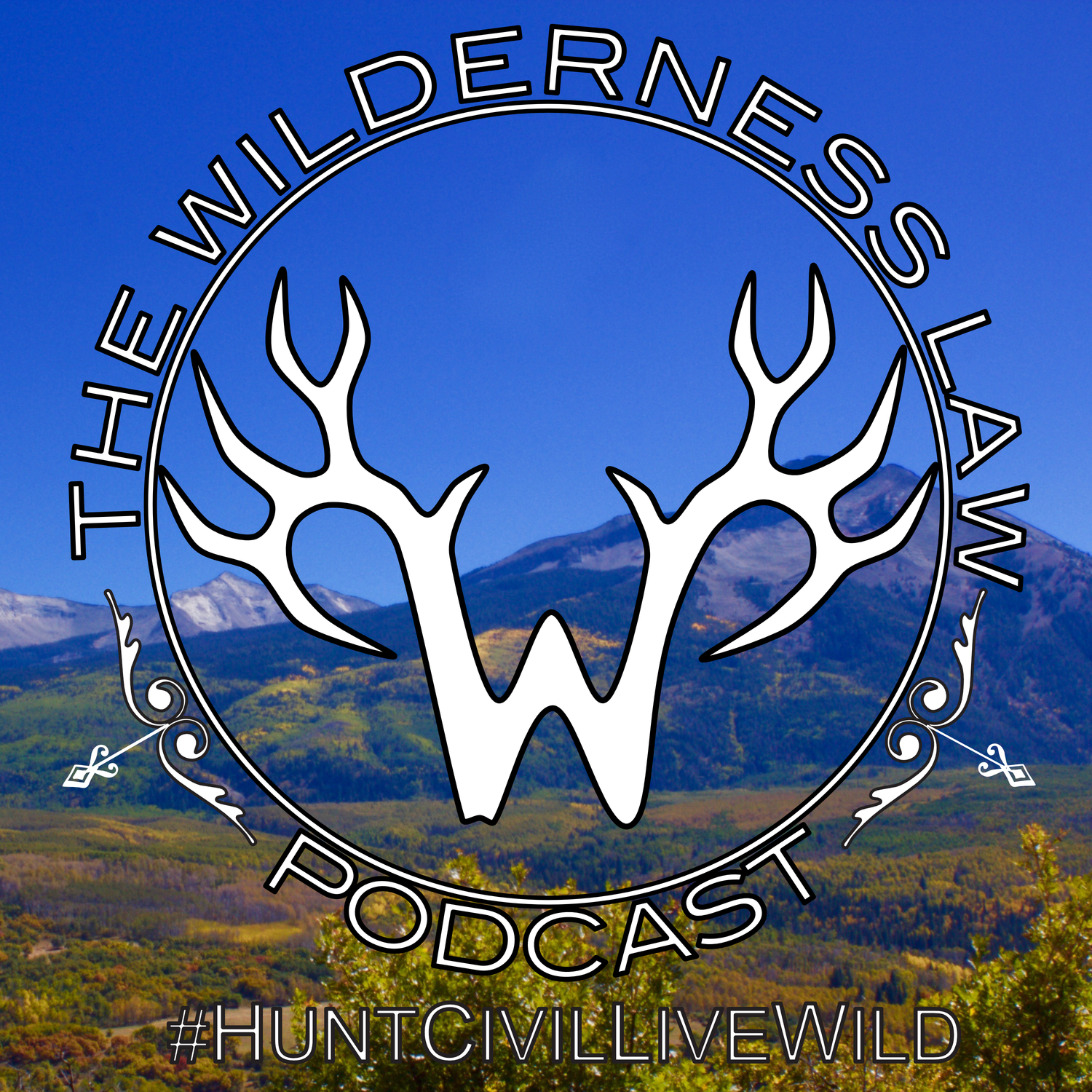 Wilderness Law