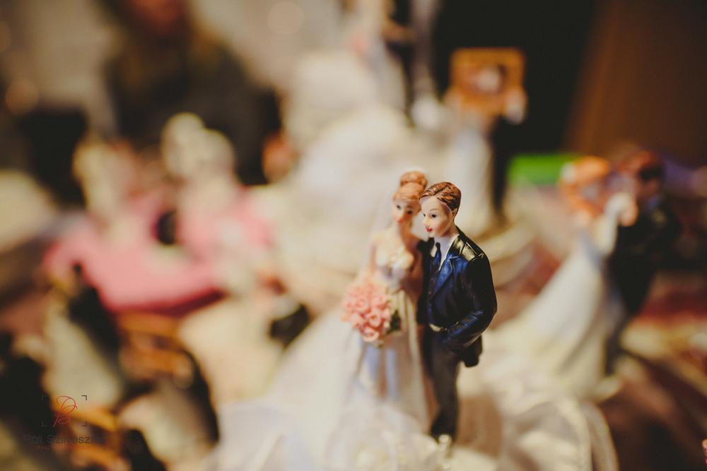 Páli-Szilveszter-székesfehérvári-esküvői-fotós-esztergom-prímás-pince-esüvőkiállítás-2016-01-23-70383.jpg