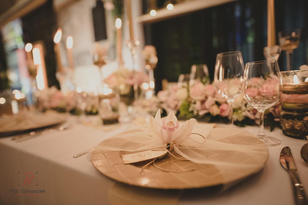 Páli-Szilveszter-székesfehérvári-esküvői-fotós-esztergom-prímás-pince-esüvőkiállítás-2016-01-23-70451.jpg