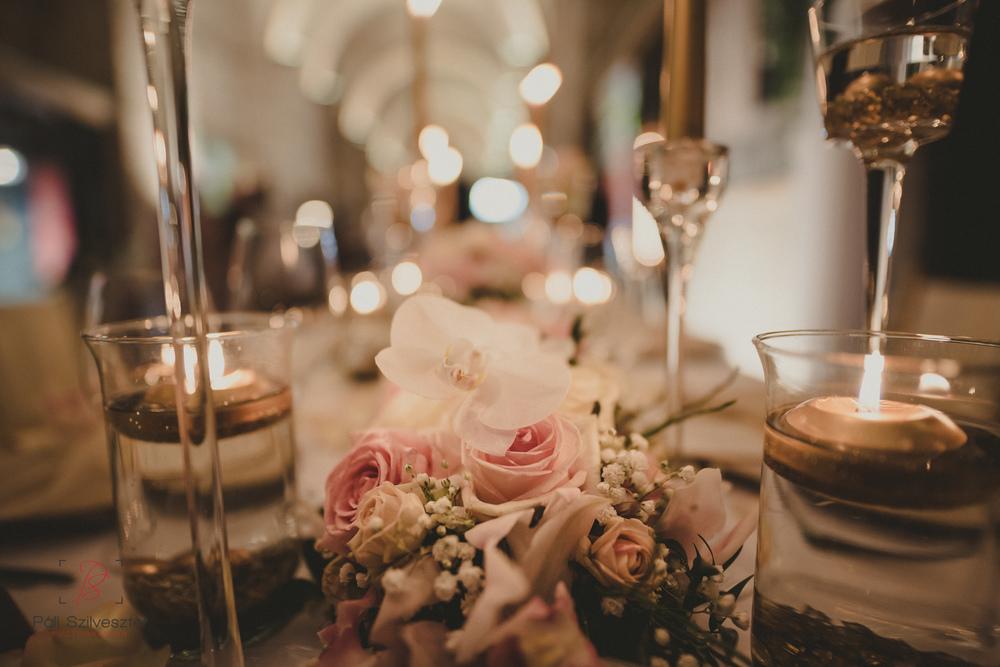 Páli-Szilveszter-székesfehérvári-esküvői-fotós-esztergom-prímás-pince-esüvőkiállítás-2016-01-23-70455.jpg