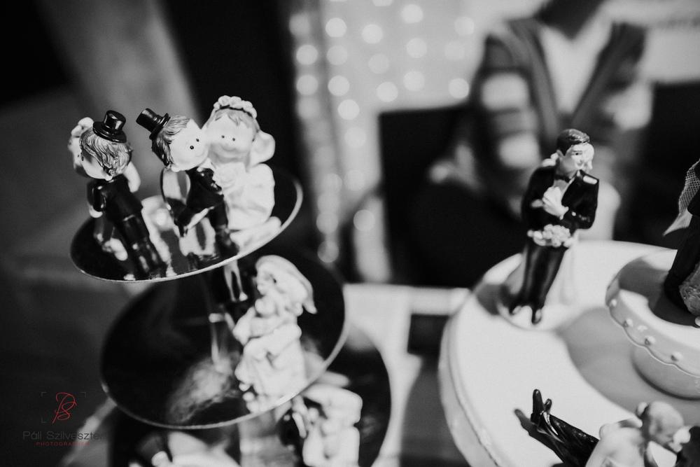 Páli-Szilveszter-székesfehérvári-esküvői-fotós-esztergom-prímás-pince-esüvőkiállítás-2016-01-23-70460.jpg