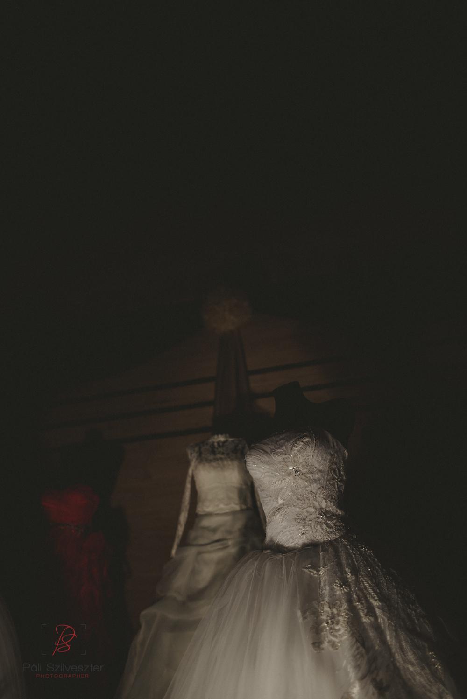 Páli-Szilveszter-székesfehérvári-esküvői-fotós-esztergom-prímás-pince-esüvőkiállítás-2016-01-23-70477.jpg