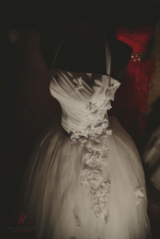 Páli-Szilveszter-székesfehérvári-esküvői-fotós-esztergom-prímás-pince-esüvőkiállítás-2016-01-23-70482.jpg
