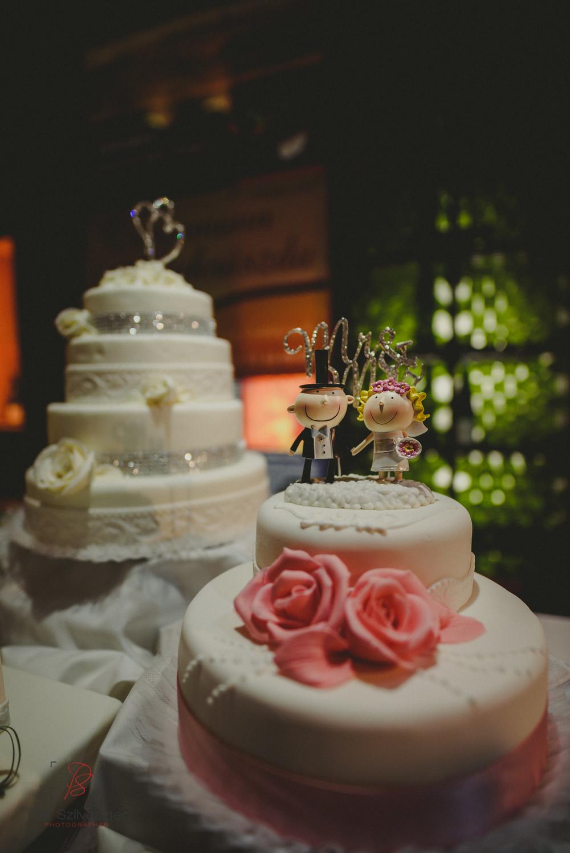 Páli-Szilveszter-székesfehérvári-esküvői-fotós-esztergom-prímás-pince-esüvőkiállítás-2016-01-23-70551.jpg