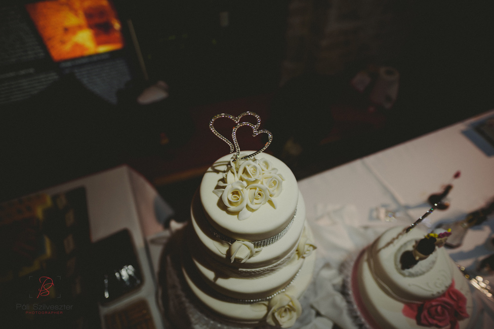 Páli-Szilveszter-székesfehérvári-esküvői-fotós-esztergom-prímás-pince-esüvőkiállítás-2016-01-23-70557.jpg