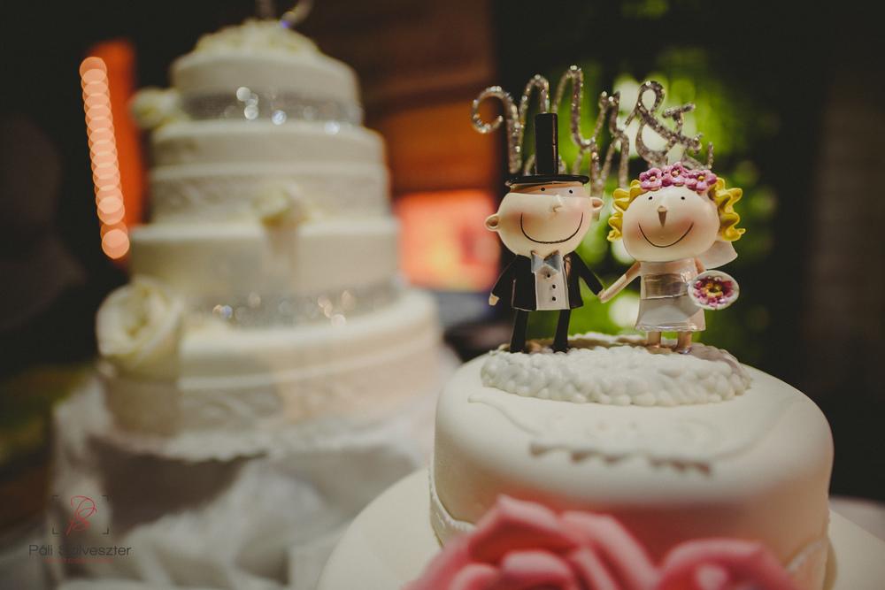 Páli-Szilveszter-székesfehérvári-esküvői-fotós-esztergom-prímás-pince-esüvőkiállítás-2016-01-23-70552.jpg