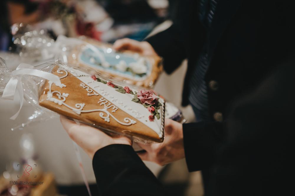 Páli-Szilveszter-székesfehérvári-esküvői-fotós-siófok-2016-02-28-1942.jpg