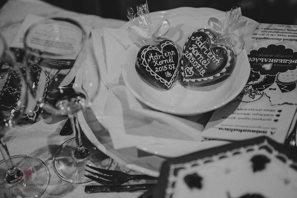 Páli-Szilveszter-székesfehérvári-esküvői-fotós-siófok-2016-02-28-1945.jpg