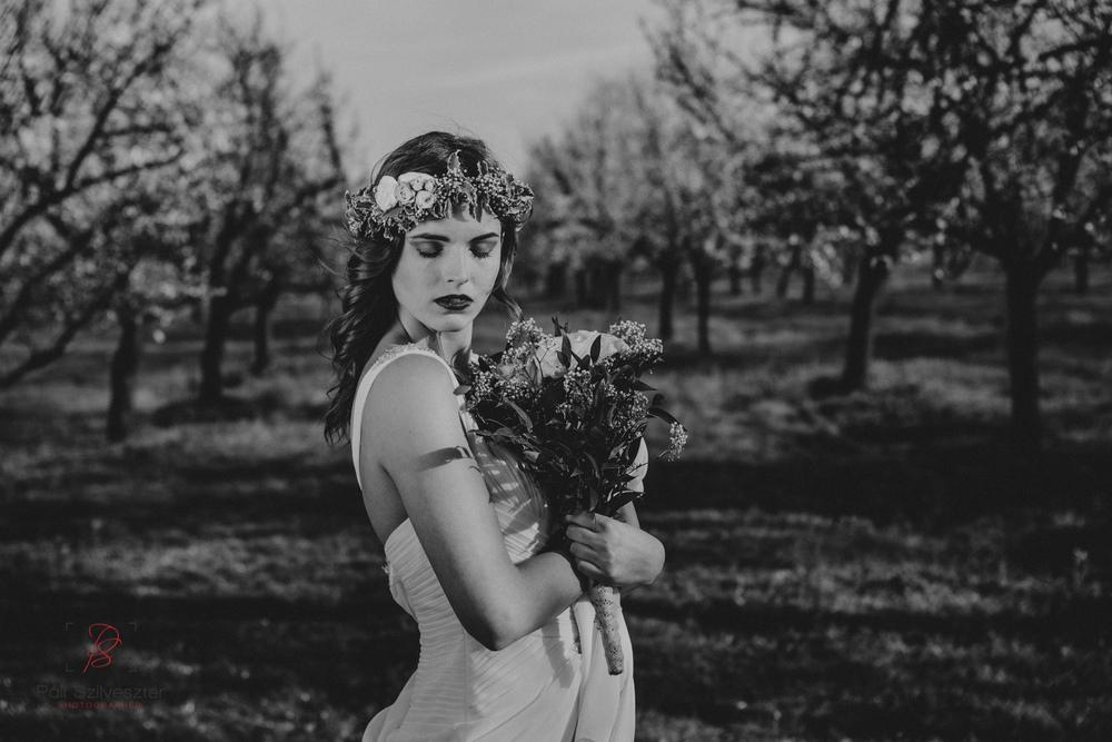 Páli-Szilveszter-székesfehérvári-esküvői-fotós-velence-barackos-2016-03-31-2314.jpg