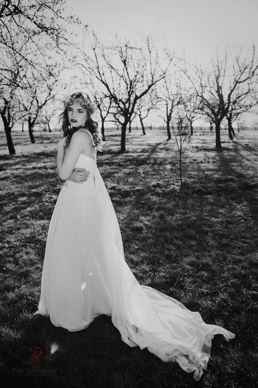 Páli-Szilveszter-székesfehérvári-esküvői-fotós-velence-barackos-2016-03-31-2370.jpg