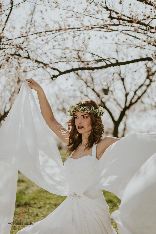 Páli-Szilveszter-székesfehérvári-esküvői-fotós-velence-barackos-2016-03-31-2075-2.jpg