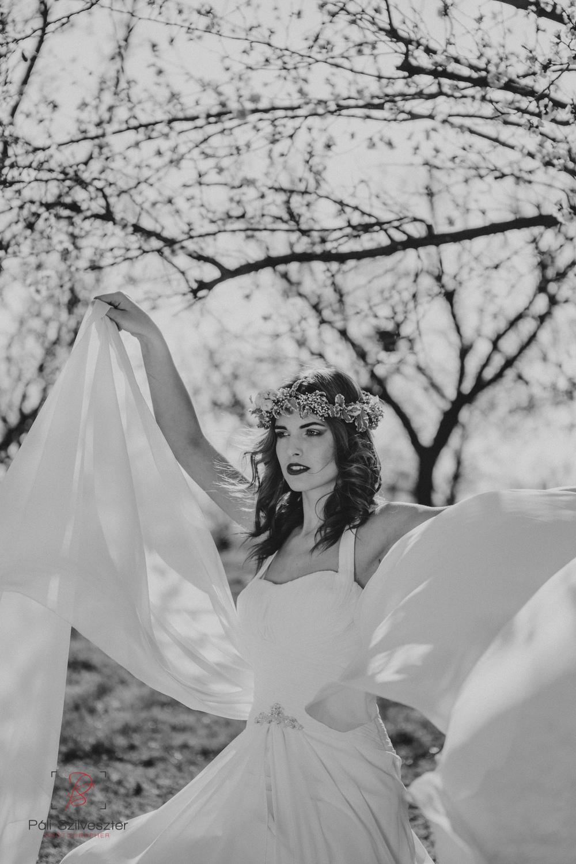 Páli-Szilveszter-székesfehérvári-esküvői-fotós-velence-barackos-2016-03-31-2075.jpg