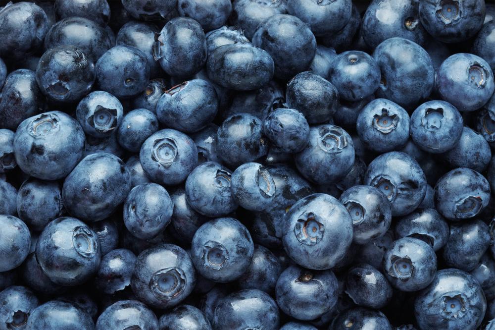 blueberries web.jpg