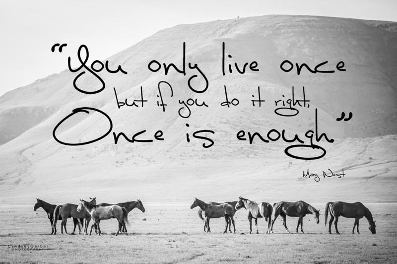 New Mexico, Horses, Cowboy, Ranchlife, Western, Photography, Inspirational , Quote