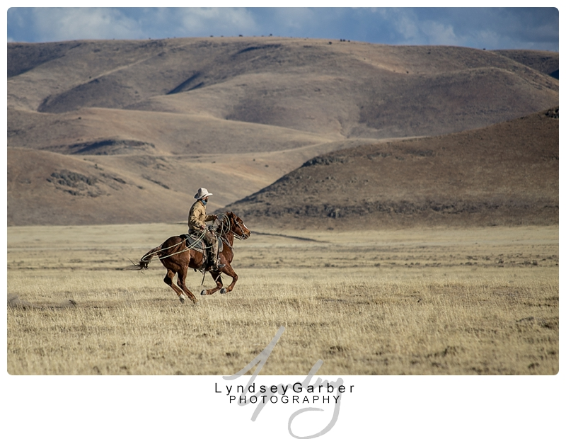 New Mexico, Ranchlife, Cowboy, Western Art, Photography