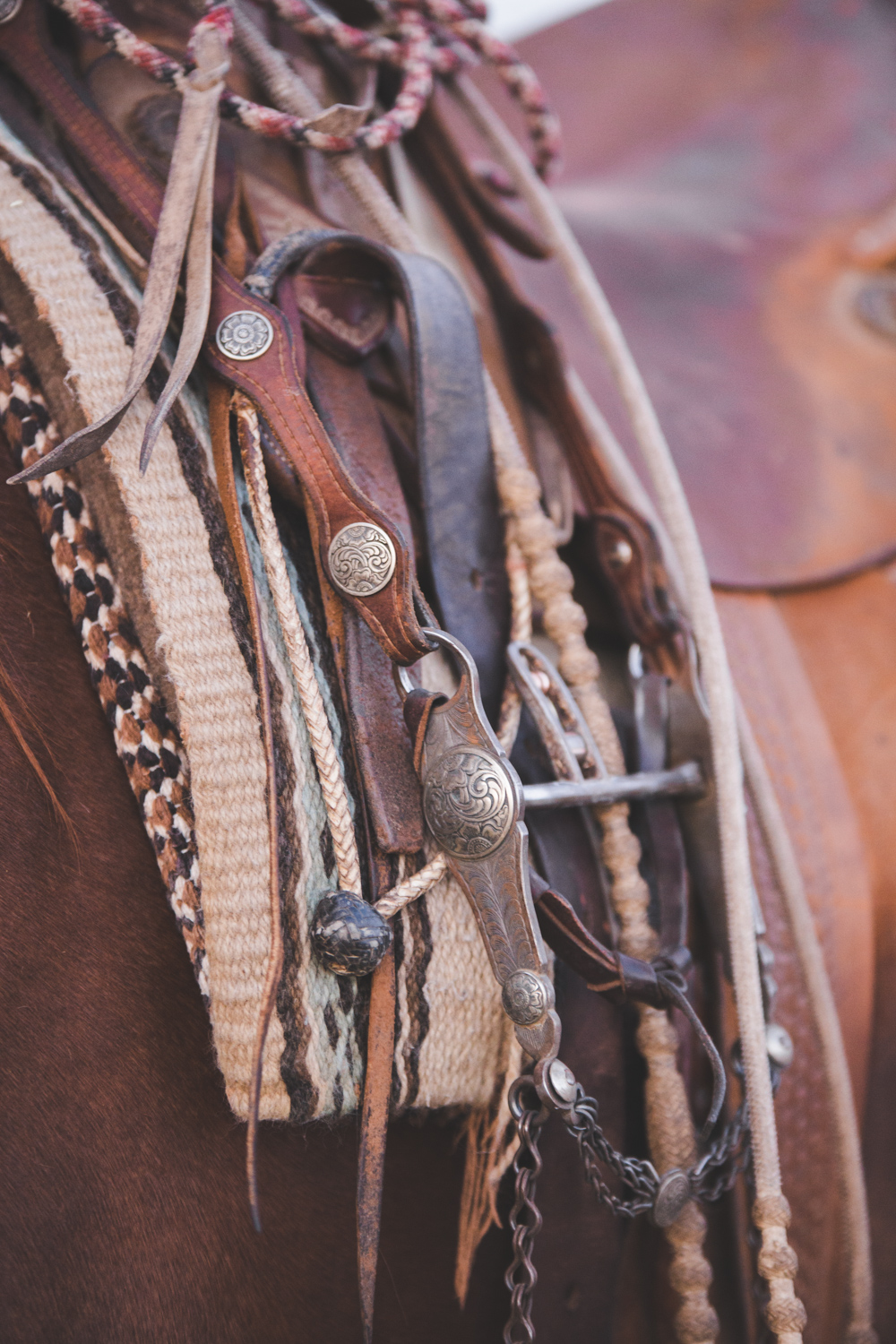 Cowboy Photography | California Ranch Branding